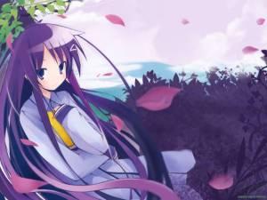 [large][AnimePaper]wallpapers_Hanbun-No-Tsuki-Ga-Noboru-Sora_eria9(1.33)__THISRES__98196